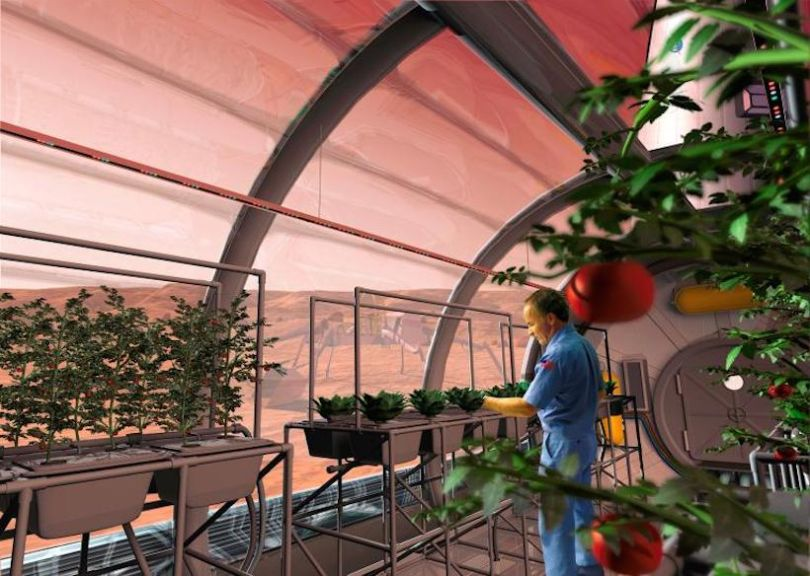 Cultivation de légumes sur la Station Spatiale Internationale